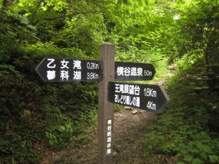 5_20071210200117.jpg