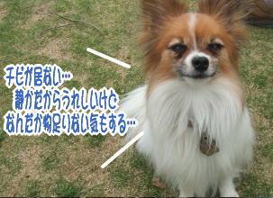 20070408080959.jpg