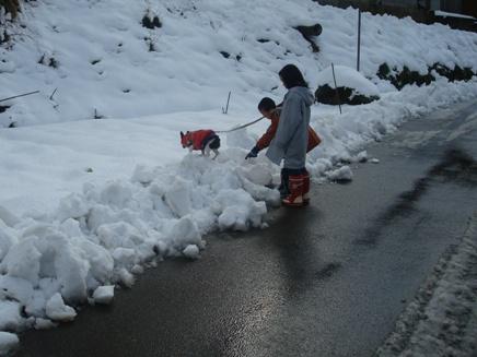 初雪体験2