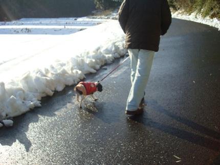 初雪体験4