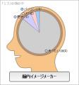 エゴの脳内イメージ