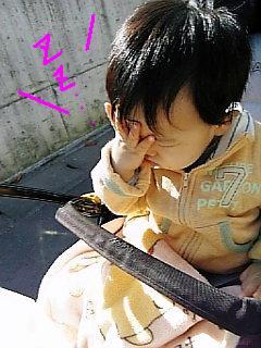 Image1436_20071121231248.jpg