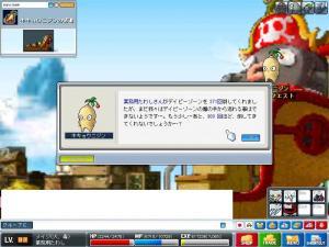 Maple0401.jpg