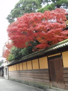20071208倉敷5