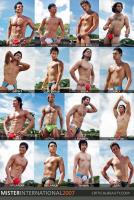 Mister_Intl_2007_Swimwear_Collage2.jpg