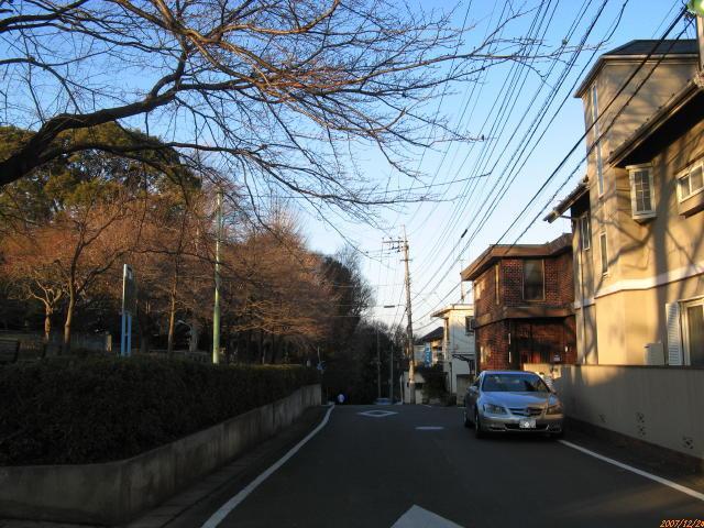 稲田登戸界隈 五所塚遠景 川崎市...