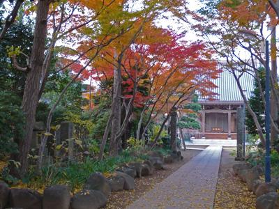 近所のお寺1