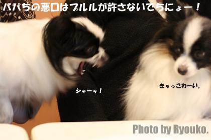 2007.12.09.6.jpg