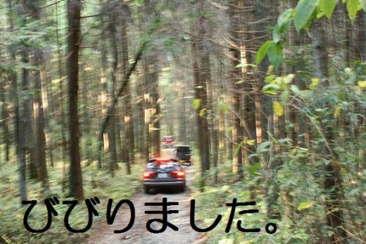 20071120143338.jpg