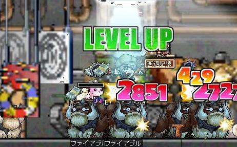 Maple0239_20071215130922.jpg