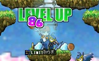 lvyp-to30.jpg