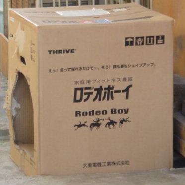 DSC00151-box.jpg