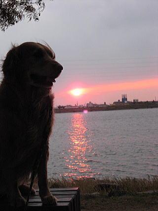 夕日とリーさん