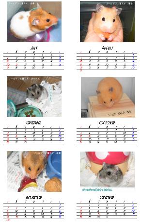 2008カレンダー見本2
