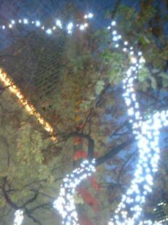 西新宿の夜