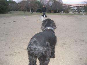 2008年元旦4