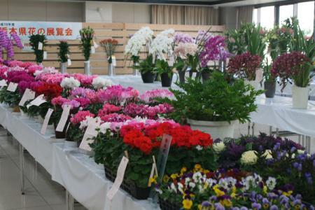 栃木県花の展覧会