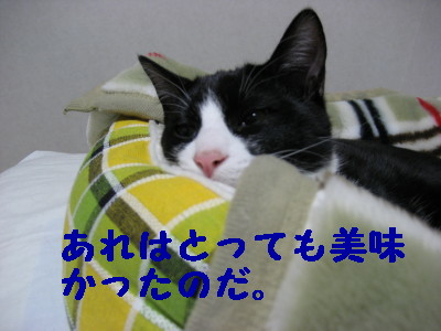 20070420113831.jpg