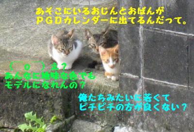 20070918133437.jpg