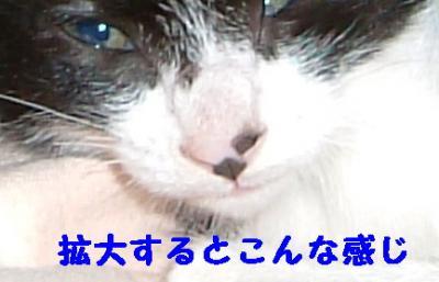 20070921091757.jpg