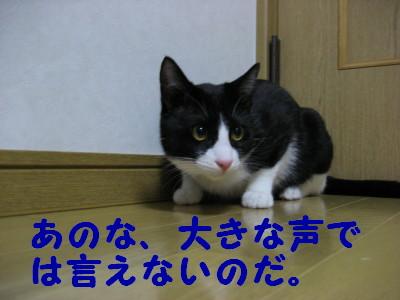 IMG_1529.jpg