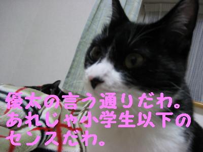 IMG_1667.jpg