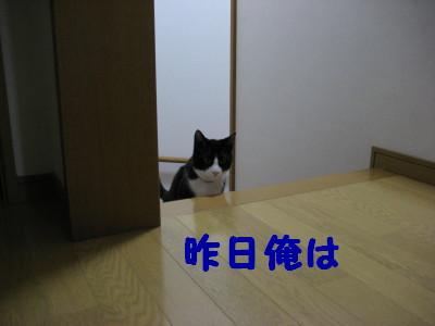 IMG_1756.jpg