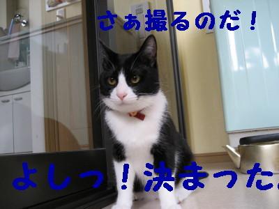 IMG_1839.jpg