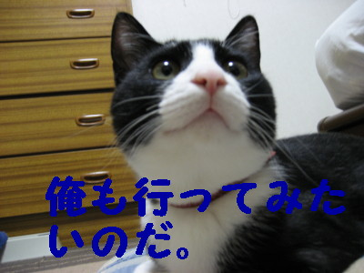IMG_2119.jpg