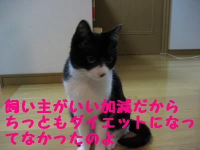 IMG_2149.jpg
