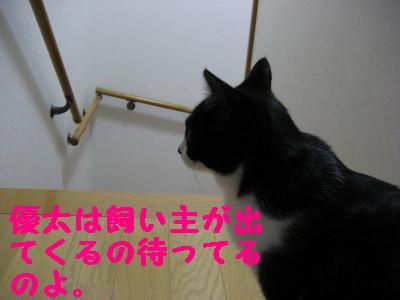 IMG_2198.jpg