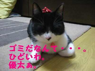 IMG_2286.jpg