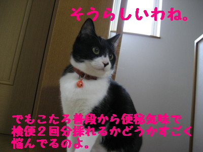 IMG_2467.jpg