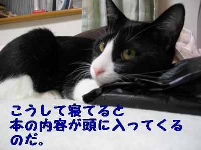 IMG_2813.jpg