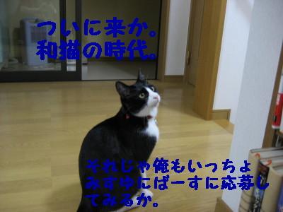 IMG_3126.jpg