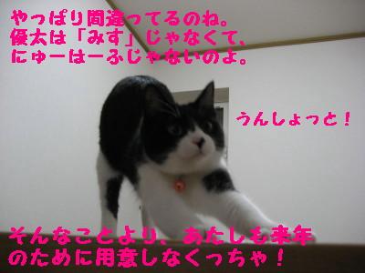 IMG_3167.jpg