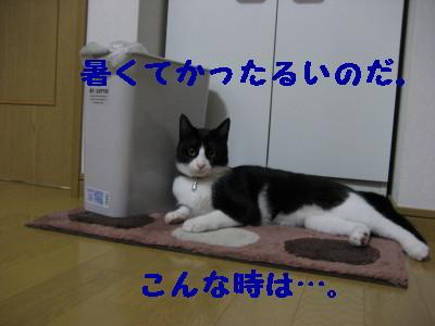 IMG_3201.jpg