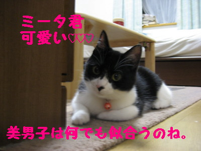 IMG_3281.jpg