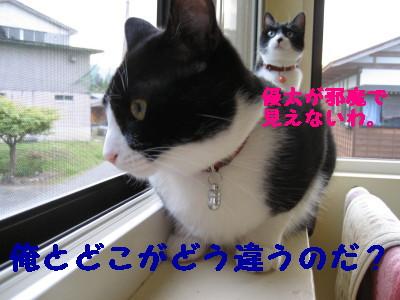 IMG_3539.jpg
