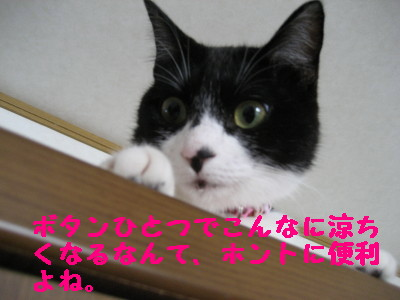 IMG_3986.jpg