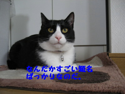 IMG_4639.jpg