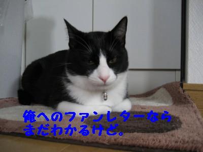 IMG_4640.jpg