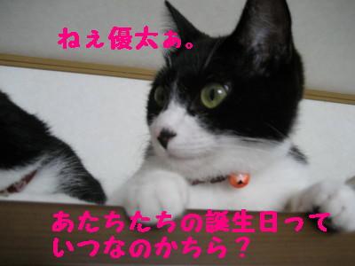 IMG_4661.jpg