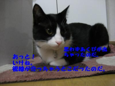 IMG_4873.jpg