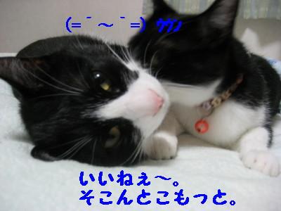 IMG_4904.jpg