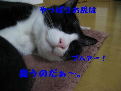 IMG_4927.jpg