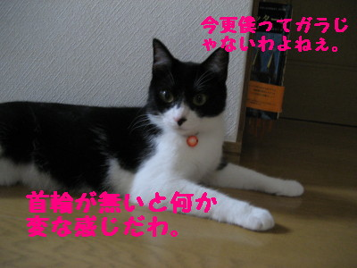 IMG_5147.jpg