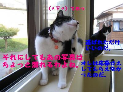IMG_5207.jpg