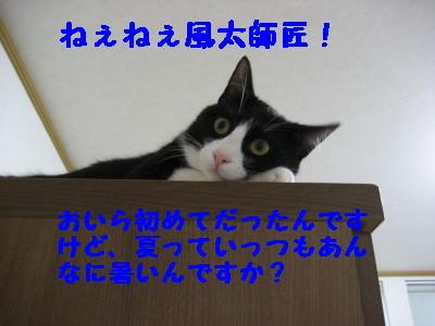 IMG_5512.jpg