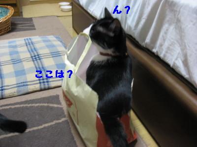 IMG_5607.jpg